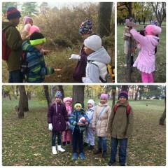 Экскурсия в Ботанический сад им. И.С. Косенко!